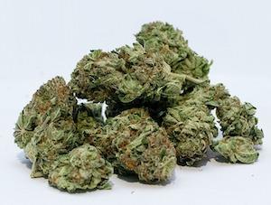 大麻(マリファナ)が合法な先進国カナダではどうやって使ってるの?医療・嗜好用のマリファナ